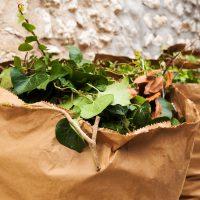 Déchets verts : Ramassage par la CCM